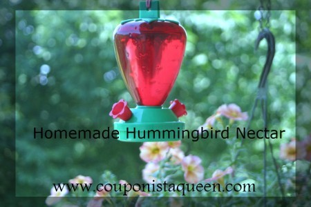 Homemade Hummingbird Nectar Recipe to Feed Hummingbirds